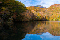 Autumn Fall Lake Japan