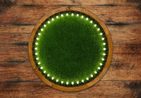 Wooden ring light frame with green grass backdrop