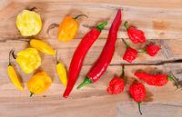 verschiedene scharfe Chilisorten auf einem Holzbrett Peperoni