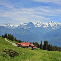 Snow capped mountains Eiger, Monch and Jungfrau, view from Mount Niederhorn. Bernese Oberland, Switzerland.