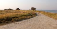 Road in the Makgadikgadi pans