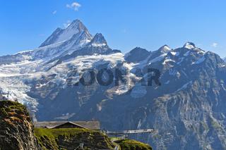 First Cliff Walk by Tissot mit Aussichtsplattform im Wandergebiet First, Grindelwald, Schweiz
