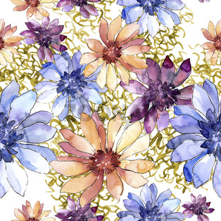 Colorful african daisy. Floral botanical flower.Seamless background pattern.