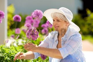 senior woman with allium flowers at summer garden