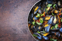 Traditional barbecue Italian blue mussel in red wine sauce as top view in a casserole with copy space left