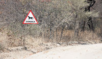 Sign at the side of the road, warning for horses