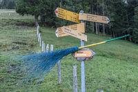 Wetter Hexenweg auf dem Wirzweli, Nidwalden, Schweiz, Europa