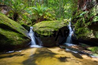 Lush green foliage and twin waterfalls