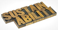 sustainability word in wood type