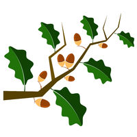 Ripe Acorn Icon. Autumn Oak Branch and Leaves Logo