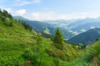 Alpen Panorama mit Berg Landschaft