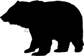 Silhouette brown bear on a white background