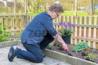 Caucasian senior woman planting pot plant in garden
