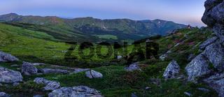 Carpathian morning summer panarama view.