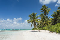 Traumstrand der Karibik, Dream beach of the Caribbean