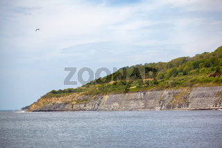 The Chippel Bay and cliffs of Liassic rocks. West Dorset. England