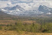 Hochmoor Vaksvikfjellet