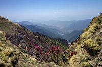 Colourful Valley seen from Tungnath Peak, Garhwal, Uttarakhand, India