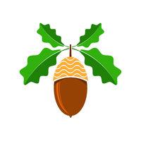 Ripe Acorn Icon. Autumn Oak Nut and Leaves Logo