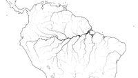 World Map of AMAZON SELVA REGION in SOUTH AMERICA: Amazon River, Brazil, Venezuela. (Geographic chart).
