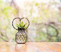 Plant in handmade heart shape decorative vase