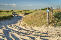 sandy off-road trails