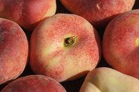 Prunus persica Samanta Weissfleischig, Plattpfirsich, Peach