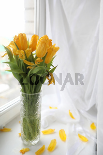 A bouquet of yellow tulips in a vase on the windowsill. A gift t