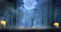 Halloween misty forest