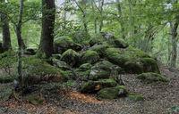 Naturdenkmal im Odenwald