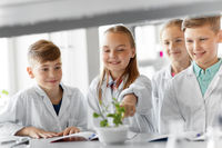 kids or students with plant at biology class