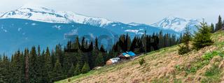 Spring Carpathian mountains
