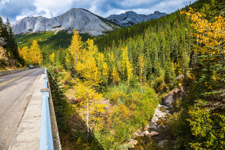 The road in Rocky Mountains