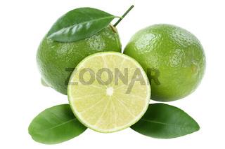 Limone Frucht Limette Früchte Freisteller freigestellt isoliert