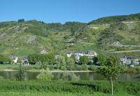 Weinort Valwig an der Mosel,Rheinland-Pfalz,Deutschland