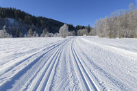 Cross country skiing track in winter landscape near lake Barmsee