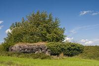 Reste eines Bunkers,  2. Weltkrieg