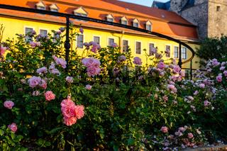 Ballenstedt Harz Bilder vom Schloss