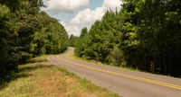 Long Windy Road Through National Forest Land USA North America