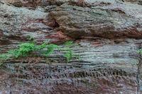Sandsteinfelsen im Dahner Felsenland, Rheinland-Pfalz