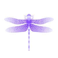 Blue Stilized Dragonfly. Insect Logo Design. Aeschna Viridls