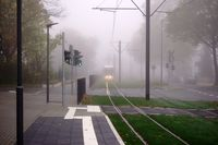 Straßenbahn im Nebel
