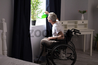 Disabled man watering house plant.