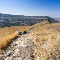 Gamla nature reserve in Israel