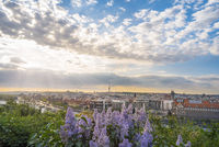 Sunrise over Prague city and lilac flowers