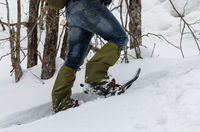 Man in snowshoes in the snow in the forest.