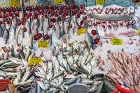 Auswahl an frischem Fisch auf einem Markt