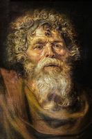 Head Of An Old Man, Peter Paul Rubens, The Hermitage St. Petersburg Russia