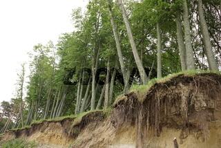 Slide Soil Erosion