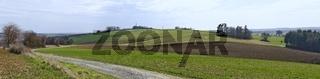 Panorama einer hügeligen Frühlingslandschaft mit Weg in Bad Tatzmannsdorf